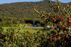 so Vermont..apple picking time and a big barn..awesome, photo by Elisabeth Finstad