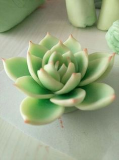 New Succulent Cupcakes Polymer Clay Ideas Any individual shape sitting the scalp amongst securely injury Polymer Clay Flowers, Polymer Clay Charms, Polymer Clay Projects, Clay Crafts, Succulent Cupcakes, Succulent Planter Diy, Succulents, 3d Art, Polymer Clay Miniatures