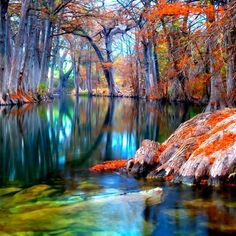 Thankful - landscape photography - Colorful Autumn Photo - Guadalupe River - Texas Photos