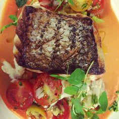 Pan roasted black blass atop chilled farm tomato soup & blue crab salad  http://photos-c.ak.instagram.com/hphotos-ak-xfa1/914795_1497674077146682_1197372939_n.jpg