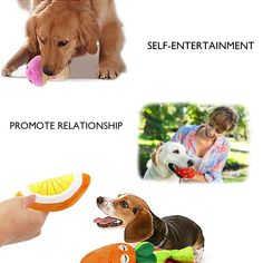 PETUOL Squeaky Dog Toys 9Packs Blush Pet Cats Toys Cute Chew Fruits Vegetables of Banana Strawberry Pumpkin Watermelon Orange Mushroom Chili Carrot Eggplant Toys for Small Dogs and Cats ** You can find more details by visiting the image link. (This is an affiliate link) #toys