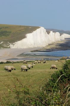 All sizes | South Downs National Park | Flickr - Photo Sharing!