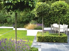 An outdoor dining area is defined by clipped lollipop bay trees that emerge from box-framed lavender beds. A slate terrace adds textural contrast.