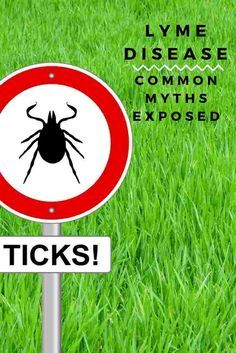 Ticks carrying Lyme disease have been reported in all 50 states. The information in this article can help keep you and your family safe from this widespread and serious disease.