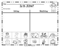 Living vs. Nonliving Sort Worksheet by Julie Aiken | TpT