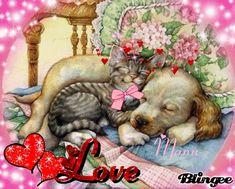 Cute Baby Cartoon, Good Night Sleep Tight, Good Night Blessings, Glitter Gif, Good Night Sweet Dreams, Cat Art, Girl Dolls, Cute Cats, Cute Babies