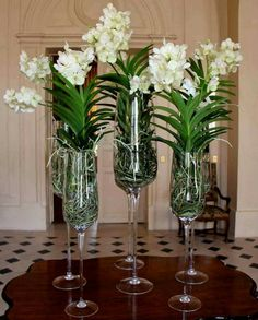Something like this for the entry table Centerpiece Decorations, Floral Centerpieces, Wedding Decorations, Centrepieces, Hotel Flower Arrangements, Indoor Orchids, Orchid Planters, Hotel Flowers, House Plants Decor