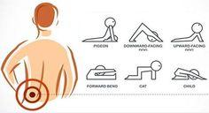 """4 exercices pour soulager la douleur du bas du dos """"lombalgies"""". L'étirement est très efficace pour soulager le bas des douleurs lombaires. En effet Circulation Sanguine, Yoga Meditation, Let It Be, Workout, Motivation, Sports, Sante Plus, Chakras, Stretching"""