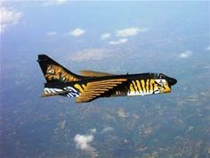 Nose art is a decorative painting or design on the fuselage of a military aircraft, usually located near the nose, and is a form of aircraft graffiti. Military Jets, Military Aircraft, Fighter Aircraft, Fighter Jets, Photo Avion, Hellenic Air Force, Plane Photos, Airplane Art, Airplane Painting
