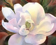 "Daily Paintworks - ""SOUTHERN BELLE magnolia watercolor flower painting"" - Original Fine Art for Sale - © Barbara Fox"