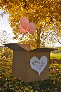 Balloons in a box.such a fun idea if you are throwing a baby gender reveal party! Fall Gender Reveal, Halloween Gender Reveal, Pregnancy Gender Reveal, Gender Reveal Balloons, Baby Gender Reveal Party, Gender Party, Gender Announcements, Thanksgiving Baby, Cute Baby Photos