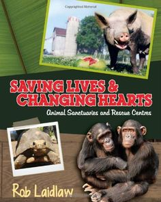 Saving Lives and Changing Hearts: Animal Sanctuaries and Rescue Centers Good Books, My Books, Middle School Books, Books For Teens, Teen Books, Latest Books, Nonfiction Books, Pet Care, Elementary Schools