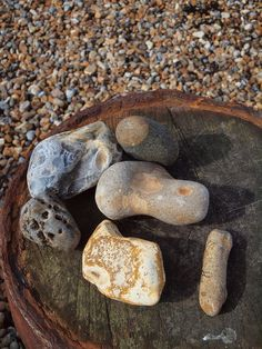 Pebbles on Tankerton beach Whitstable , Kent , England [shared]