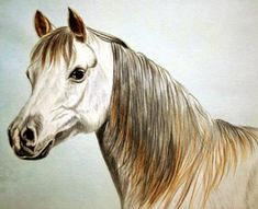 how to paint a horse, watercolour horse painting tutorial, free art lesson Watercolor Art Lessons, Watercolor Horse, Watercolor Painting Techniques, Watercolour Tutorials, Painting Lessons, Painting & Drawing, Watercolor Paintings, Painting Tutorials, Watercolors