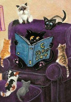DesertRose,;,funny Cats ;;,