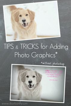 Photo Graphics Tips and Tricks