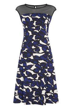 9a95158b8792 Floral Scuba Skater Dress at Roman Originals Blue Dresses