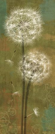 Dandelion Soft Breeze