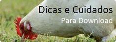 #Downloads: Folhetos, Cartilhas e Boletins ~ Galinha Hoje