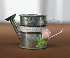 Mini Galvanized Metal Watering Cans (Set of 12)
