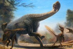 The #Europasaurus was a dwarf dinosaur that lived in present day Germany. It existed in the latter half of the Jurassic period. This was about 156 to 149 million years ago. This stage lies in the #Kimmeridgian to the Tithonian ages of the Jurassic period.