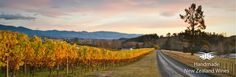 There's a stunning outlook at Kahurangi Estate
