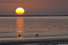 Sunset at the lagoon in Walvis Bay, Namibia Good News, Jesus Christ, Landscape Photography, Sunrise, Earth, Gallery, Outdoor, Landscapes, Inspirational