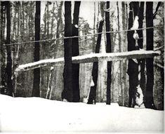 Cook Forest Winter original hand printed aquatint by printsnat