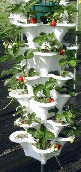 Ezgro Original Hydroponic Garden Planter #hydroponicgardening