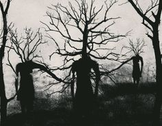 Find images and videos about dark, tree and horror on We Heart It - the app to get lost in what you love. Arte Horror, Horror Art, Sombra Lunar, Dibujos Dark, The Ancient Magus, Over The Garden Wall, My Demons, Bizarre, Dark Forest