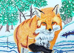 Fox in Winter Canadian Art, Fox, Winter, Animals, Winter Time, Animales, Animaux, Foxes, Animal