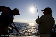 Fishing - Fair Haven, NY - Cayuga County.