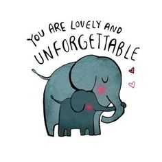 You Are Lovely & Unforgettable Elephants Elephant Quotes, Elephant Love, Elephant Art, Beautiful Words, Animals Beautiful, Cute Animals, All About Elephants, Buddha Doodle, Elephant Illustration