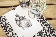 corazon sin tregua ilustracion a lapiz sobre papel raquel carrero decoracion nordica