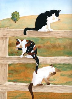 Cats on the fence janesartstudio.com