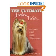 The Ultimate Yorkshire Terrier Book. Great book!  It's also available on Kindle Fire.