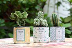 cactus dans boite de conserve customisées AY Ninejune via Nat et nature