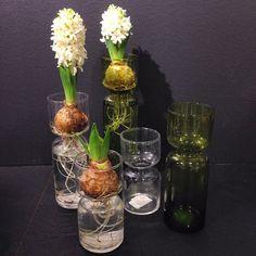 På söndag är det första advent! Vaser från 70kr. Klar & grön finns på R.O.O.M. Täby C och klar på Selected by R.O.O.M. Skrapan #roombutiken #selectedbyroom
