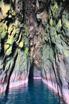 patternity  rainbow cave