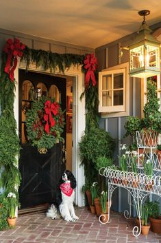 Pasadena-based jewelry designer Annie Higgins invites you to explore her brightly decorated home this holiday season. Her beloved English Springer Spaniel, Brontë, named for the Jane Eyre novelist, sits welcoming visitors at the door. Christmas Porch, Christmas Colors, Christmas Lights, Christmas Holidays, Christmas Crafts, Merry Christmas, Xmas, Christmas Manger, Primitive Christmas