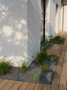 Plantations et terrasse