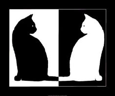 black and white - Google Search