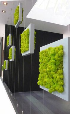 Vertical vegetable gardens 756886281105514546 - Fascinating Vertical Garden To Green Your House Source by Vertical Pallet Garden, Vertical Vegetable Gardens, Vertical Garden Design, Vegetable Garden Design, Pallets Garden, Vertical Bar, Moss Wall, Greenhouse Plans, Plant Wall