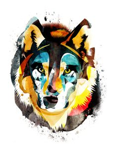 Face / Wolf / Layered Illustration