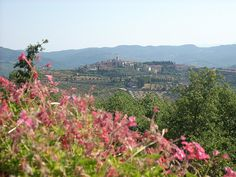 Radda in Chianti, Tuscany- this town is adorable and people are so friendly.  We have been back many times and it is one of our favorite towns in Italy.