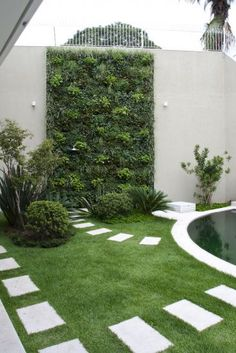 Turfed courtyard with vertical garden.