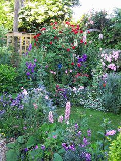 never seen my garden looking so blooming lovely Herb Garden Design, Cottage Garden Design, Cottage Garden Plants, Garden Pots, Easy Garden, Water Garden, Amazing Gardens, Beautiful Gardens, Parcs
