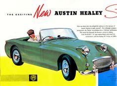 ... Austin Healey- Sprite