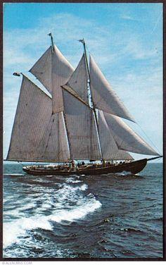 Yacht Week, Classic Sailing, Full Sail, Sail Away, Wooden Boats, Tall Ships, Boat Building, Nova Scotia, Sailboat