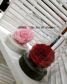 🌹 Rose Amor 🌹 #RoseAmor_ForeverRoses #foreverroses #roses #pinkroses #redroses #flowers #flowerlovers #pink #red #loveroses #love #floristshop #thessaloniki #greece #anthos_theartofflowers #lastsforever #marble #whitemarble #blackmarble #nofilters Thessaloniki, Black Marble, Pink Roses, Greece, Flowers, Instagram, Amor, Greece Country, Royal Icing Flowers
